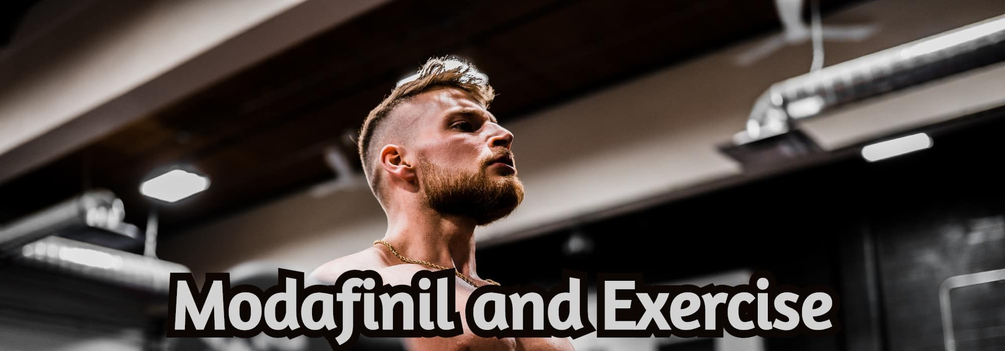 Modafinil and Exercise