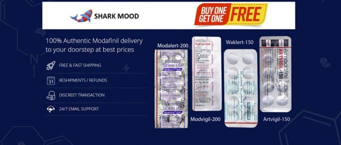 One Minute Review Sharkmood
